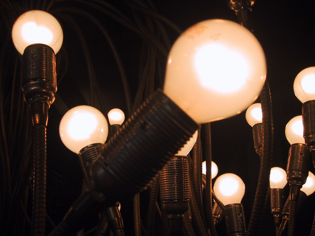 'Light bulbs' by spigoo